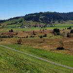 Rothenturmer Moor